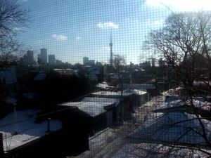 View from the back window - South!
